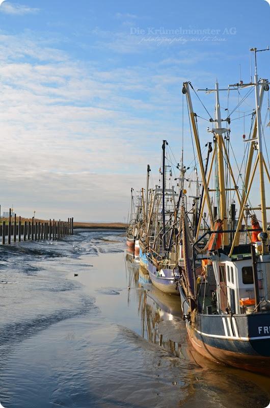 Wremer Hafen 231113 (6)