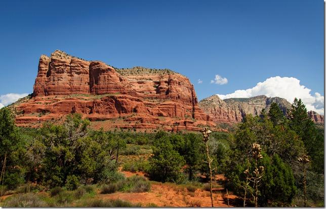 Arizona 584