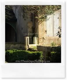 PamelaJaynePhotography 058 (Medium)