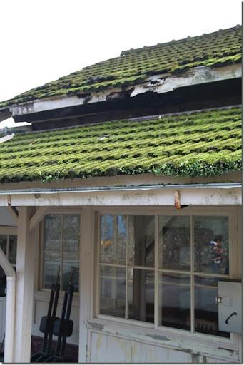 菁桐車站-青苔屋頂