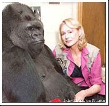 Koko et Francine Patterson