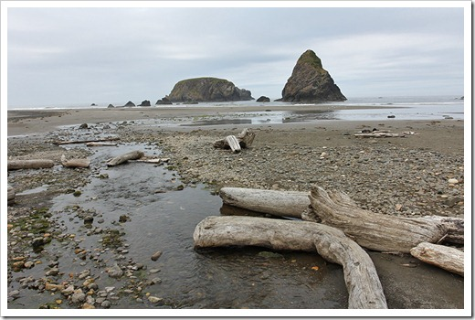 110712_Whaleshead-Beach-Brookings-OR_01