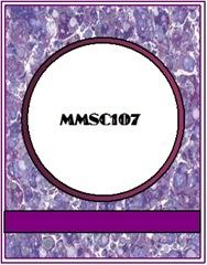 MMSC107 CAS