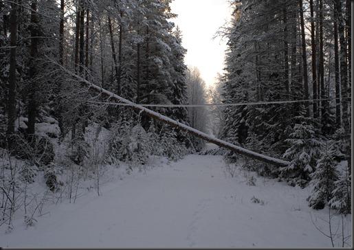 tuonen joki veneskoski 015