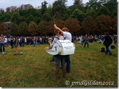 Rock en Seine 2012 (2)