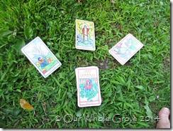 tarot omens