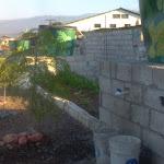 Haiti-Urban Agriculture- Jaden Tap Tap- 3/2012