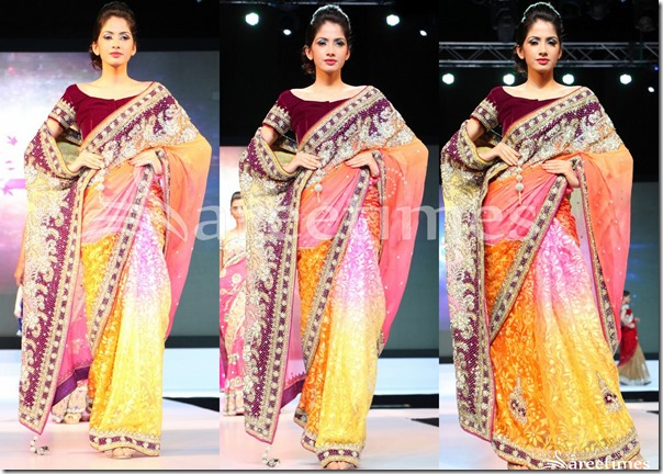Embroidery_Multicolor_Saree