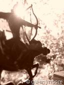 gwenynbore_rider