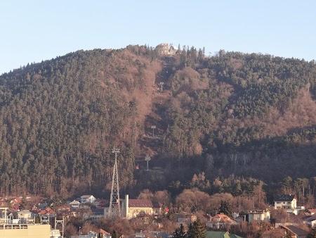 Obiective turistice Piatra Neamt: Dealul Cozla