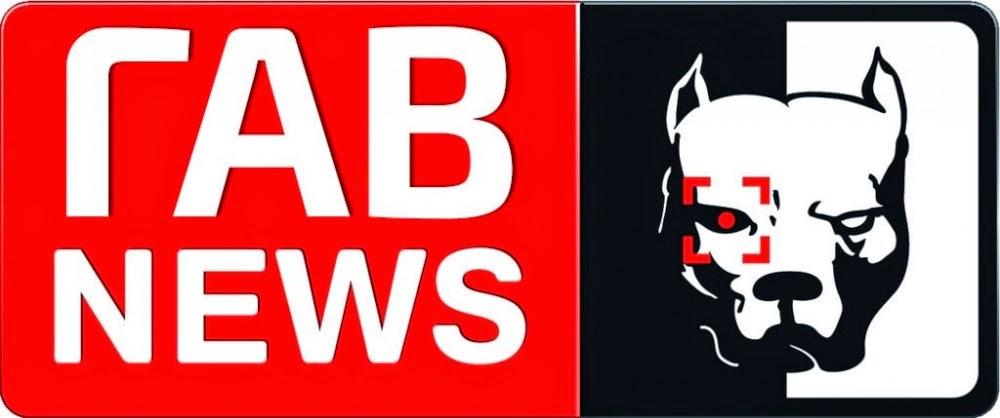 В Кишиневе задержали съемочную группу российского пропагандистского телеканала LifeNews - Цензор.НЕТ 3063