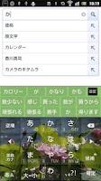 Screenshot of POBox5.0 lotus Skin