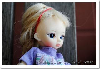tn_2012-01-28 Wren (3)