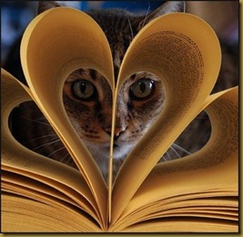 cat book heart