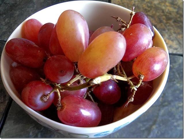 grapes-public-domain-pictures-1 (2279)