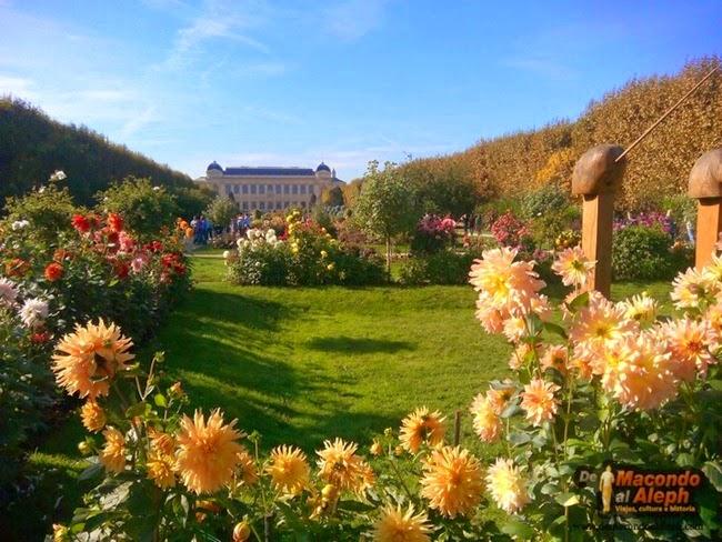 Jardin de Plantes, un poco de sol y París florece (Vídeo)