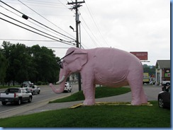 9965 Tennessee, Cookeville - Pink Elephant with giant sunglasses