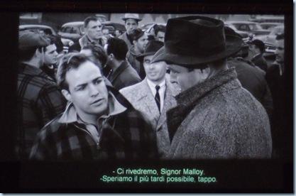Brando P7030615