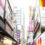 myeong-dong shopping in Seoul, Seoul Special City, South Korea