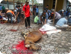 Suasana Pemotongan Hewan Kurban di Masjid Raya Kota Teluk Kuantan (26)