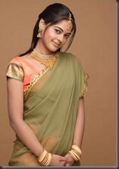bindu-madhavi-in saree