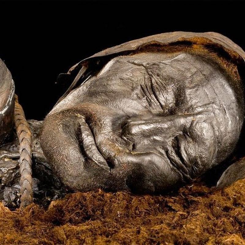Tollund Man, The 2,400 Year Old Bog Body