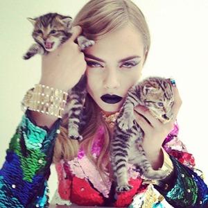 cara delevingne kittens R13349813552273904_18