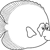 FISH5_BW_thumb.jpg