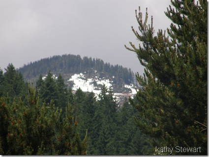 Snow on hillside