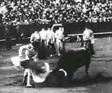 1929 Torero nº 1 Media veronica