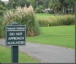 201010-w-funnysigns-gator_thumb