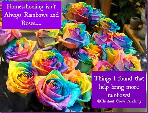 188628-rainbows-roses