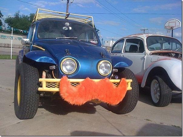 Carros com bigode (8)