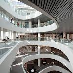 new_library_university_of_aberdeen_by_schmidt_hammer_lassen_09.jpg