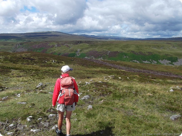 not sheila king and the cross fell range