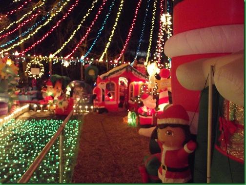 Holiday Lights 042