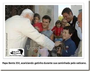 papa_ama_gatos (6)