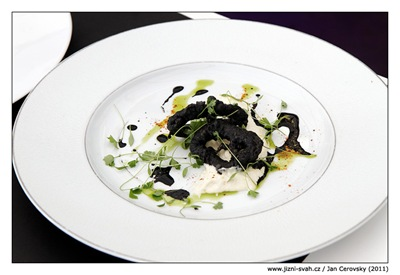 cod_squid