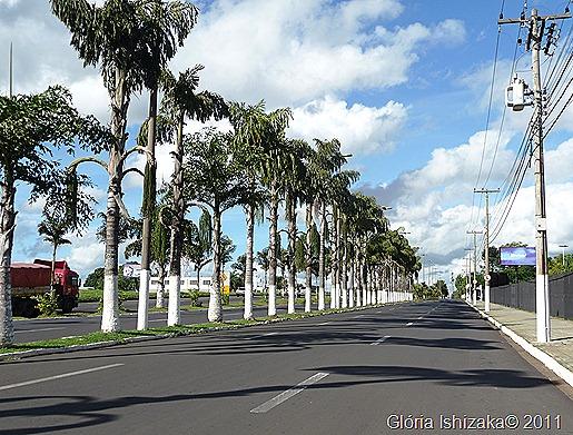 1 - Glória Ishizaka - Marília - avenida Hygino Muzzy