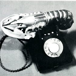 3425.JPG