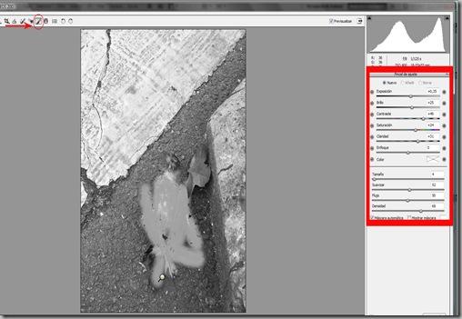 imagen 8 pincel de ajuste IIflechas recortado