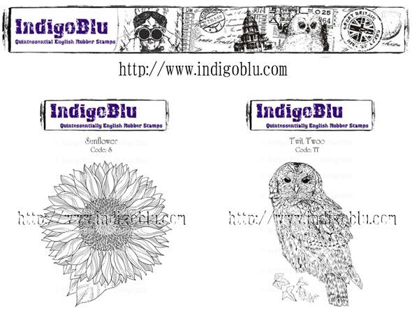 IndigoBlu day4