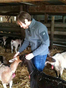 triple goat action!  todd&#039;s pretty popular in the loafing pen.