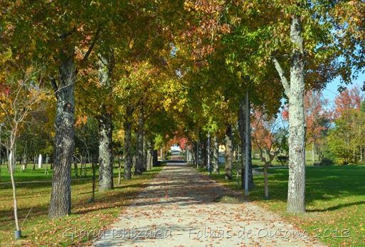Glória Ishizaka - Outono 2013 - 48