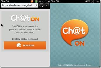 chaton-bb