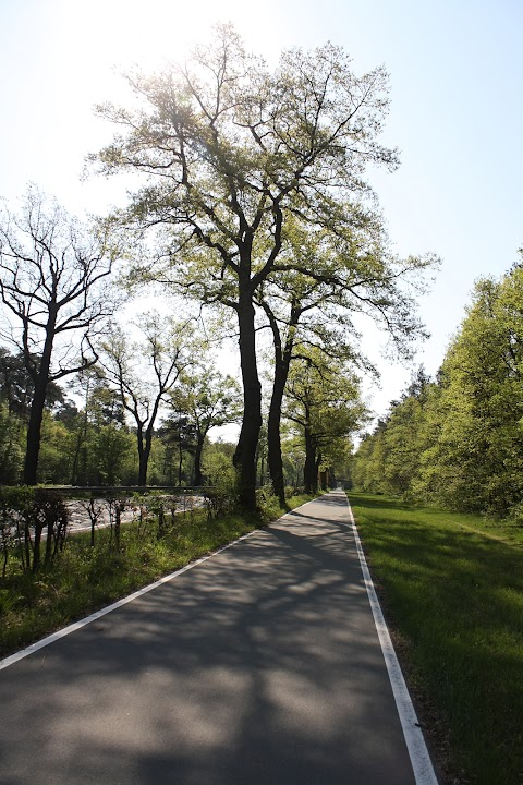 ... bike trail to Nurnberg ...