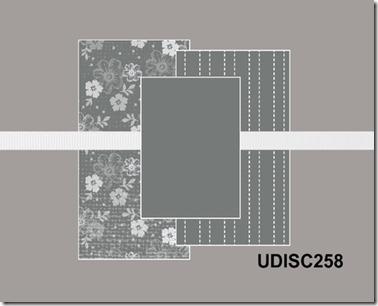 UDISC 258