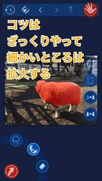 IMG_7071.jpg