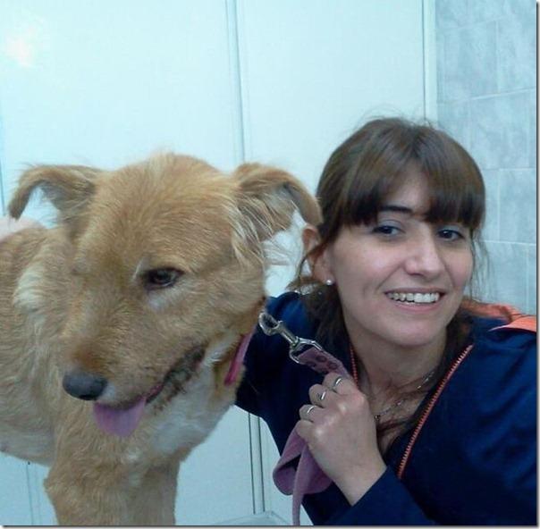 História incrível do salvamento de um cão (16)