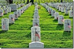 memorial day grass 2014